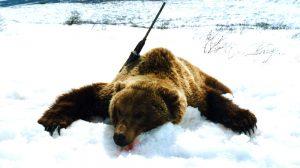 Jagen in Kamchatka
