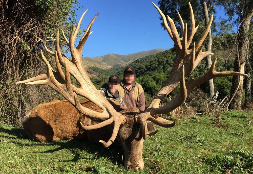 RR Weltweites Jagen | Neuseeland