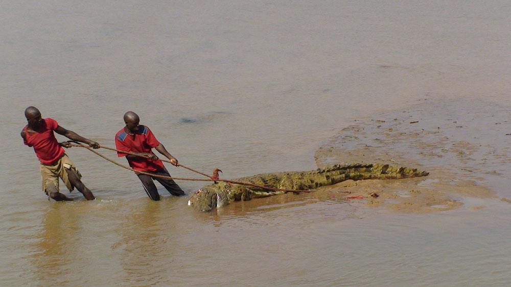 Jagen in Sambia