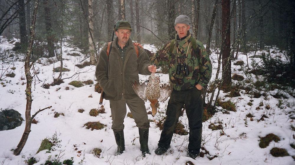 hasen jagen in schwedisch lappland