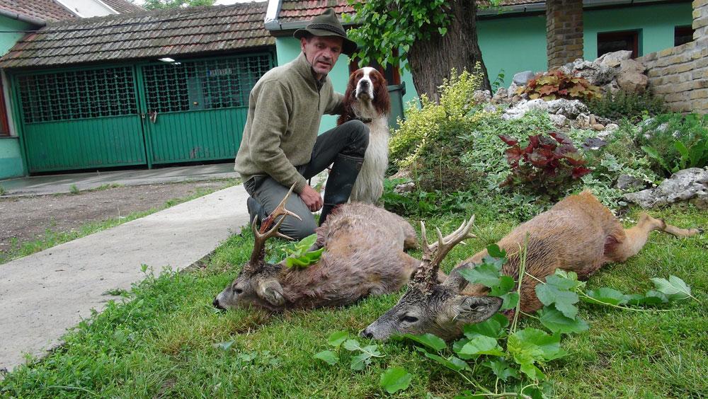 Jagen in der Vojvodina