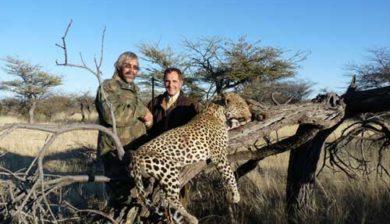 RR Weltweites Jagen   Leopardenjagd