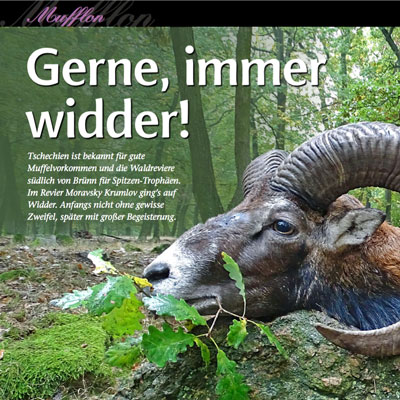 """""""Jagen Weltweit"""" Muffeljagd"""