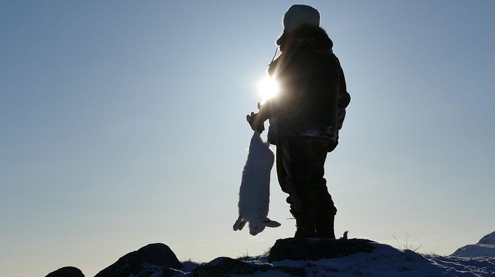 RR Weltweites Jagen | Grönland