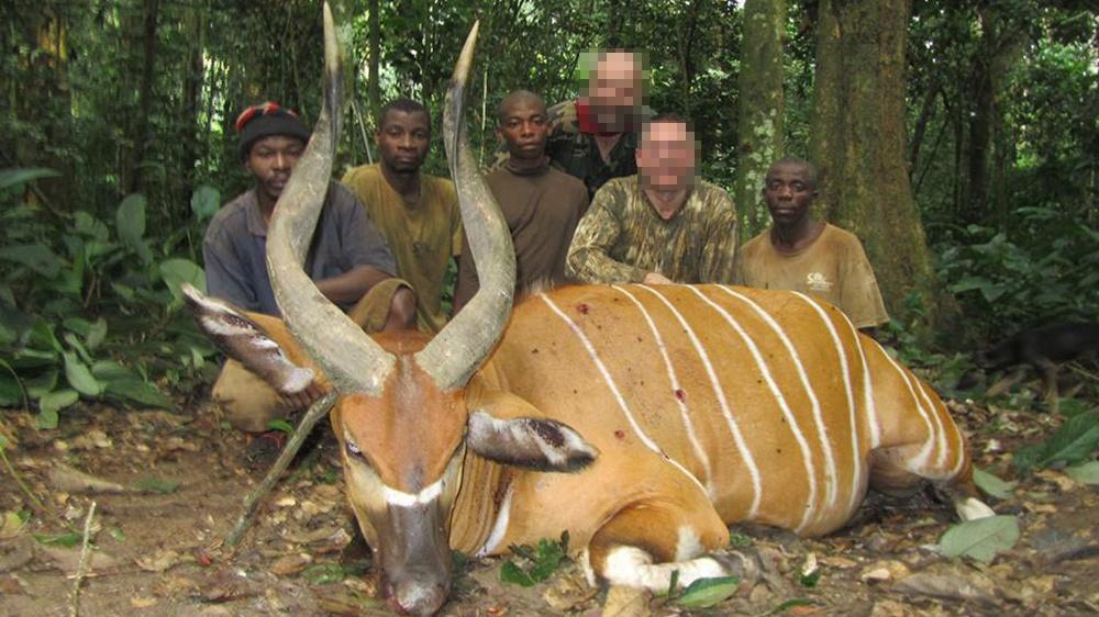 RR Weltweites Jagen | Kamerun