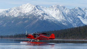 RR Weltweites Jagen   Yukon