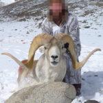 RR weltweites jagen | Argali