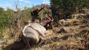 RR Weltweites Jagen   Zimbabwe